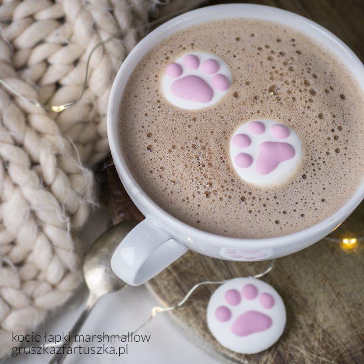 #kuchniazpazurem odcinek 2 - o tym dlaczego lepiej mieć kota niż nie, po co fundacje każą podpisywać umowę adopcyjną oraz jaki jest przepis na kocie marshmallow